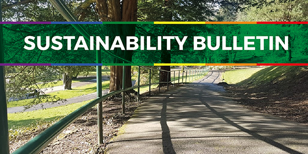 Sustainability Bulletin